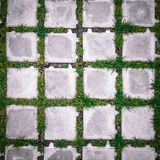 Draufsichtquadratfliesen mit grünem Gras Lizenzfreie Stockbilder
