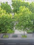 Draufsichtstraße in Paris Stockbild