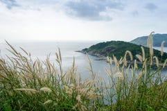 Draufsichtszene von Phromthep-Kap in Andaman-Meer mit Gras flowe Stockfoto