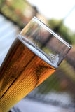 Draught beer. The glass of draught beer in outdoor cafe Stock Image