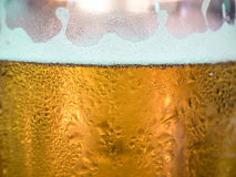 Draught beer with foam Stock Image