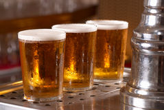 Draught pints Stock Images