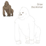 Draw the animal gorilla educational game vector Stock Photography