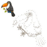 Draw the animal toucan educational game vector Stock Image