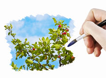 Draw an apple orchard Stock Photo
