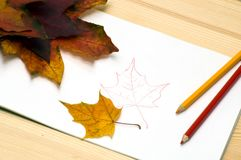 We draw the autumn Royalty Free Stock Photos