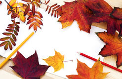 We draw the autumn Royalty Free Stock Images