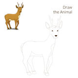 Draw the forest animal roe deer cartoon Stock Image