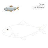 Draw the herring fish educational game vector Stock Photography