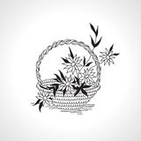 Draw the outline basket with flowers monochrome black on white Stock Photos