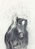 Draw pencil horse on old paper, original hand draw. Royalty Free Stock Photos