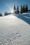 2016 draw on snow. Against backdrop of forest and sun in the sky Royalty Free Stock Photos