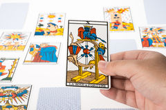 Draw tarot : The Wheel of Fortune. Draw tarot on white background : The Wheel of Fortune Stock Photography