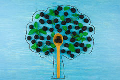 Draw a tree of blackberries on a blue wooden background Royalty Free Stock Photos