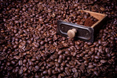 Drawer from coffee grinder full of caffee beans and powder Royalty Free Stock Photo