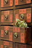 Drawers of Chinese medicine shop Royalty Free Stock Photos
