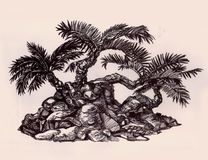 Palm trees on a hill, a composition of three trees. Drawing of African tropical plants Royalty Free Stock Image
