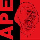 Drawing of a Ape`s head. Leader of a pack of gorillas. Aggressive monkey. Graphic design of the cover. Template for design. Vector Royalty Free Stock Images