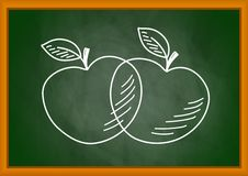 Drawing of apples Stock Photo