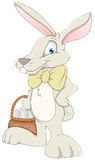 Easter Bunny - Cartoon Character - Vector Illustration Royalty Free Stock Photo