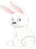 Bunny - Cartoon Character - Vector Illustration Stock Photography