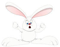 Bunny - Cartoon Character- Vector Illustration Stock Images