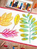 Drawing: autumn leaves Royalty Free Stock Images