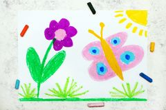 Drawing:  Beautiful butterfly and flower. Spring meadow