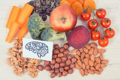 Drawing of brain and best food for health and good memory, healthy eating concept
