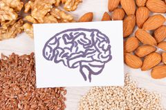 Drawing of brain and healthy food for power and good memory, nutritious eating containing vitamins and minerals stock photos