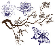 Drawing branch with flowers and butterflies Royalty Free Stock Photography