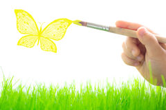 Drawing butterfly. Over spring green grass stock images