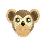 Drawing capuchin primate brazil fauna Royalty Free Stock Images