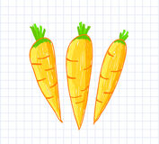 Drawing of carrots Stock Image