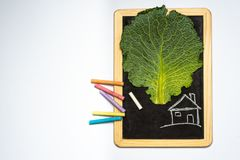 My own, inexpensive, ecological house stock image