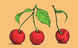 Drawing cherry Royalty Free Stock Photography