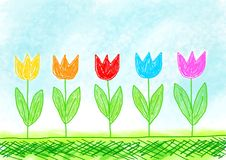 Drawing of colorful tulips Royalty Free Stock Photos