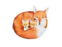 Drawing of cute fox family, mother and two fox-cubs Royalty Free Stock Image