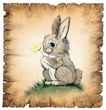 A drawing of a cute rabbit Royalty Free Stock Photo