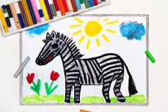 Drawing: Cute smiling zebra,. Colorful drawing: Cute smiling zebra, wild animal royalty free stock image