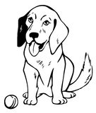 Drawing dog with ball Stock Image