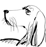 Drawing of the dog Stock Photo