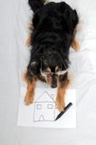 Drawing Dog Stock Images
