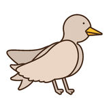 Drawing dove wedding icon Royalty Free Stock Photography