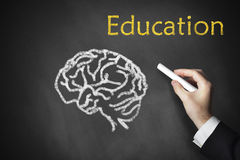 Drawing education brain on board. Drawing education and a brain on a chalk board Stock Photography