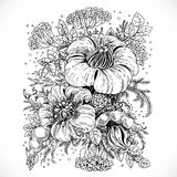 Drawing fantasy flower and leaves composition Royalty Free Stock Image