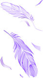 Drawing feather Royalty Free Stock Image