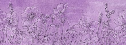 Drawing of a field of flowers. Banner,vintage Royalty Free Stock Photography