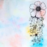 Drawing flower and rainbow watercolor Stock Image