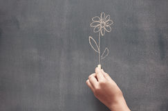 Drawing flower stock photo